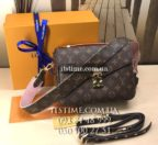 Сумка Louis Vuitton №51